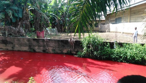 Photo of Chiefs, pastors clash over polluted river at Koforidua