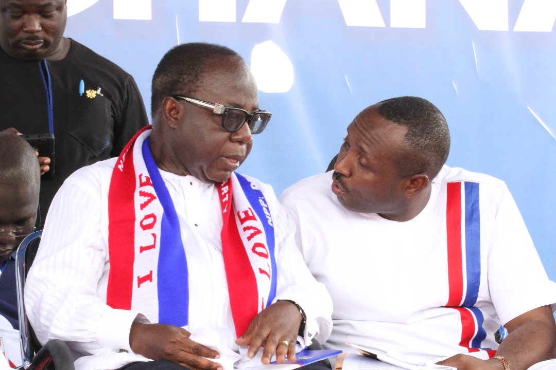 Photo of NPP primaries: NEC clears disqualified aspirants