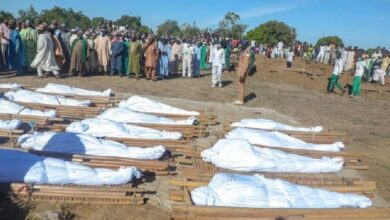 Photo of Farm workers killed in 'insane' Nigeria attack